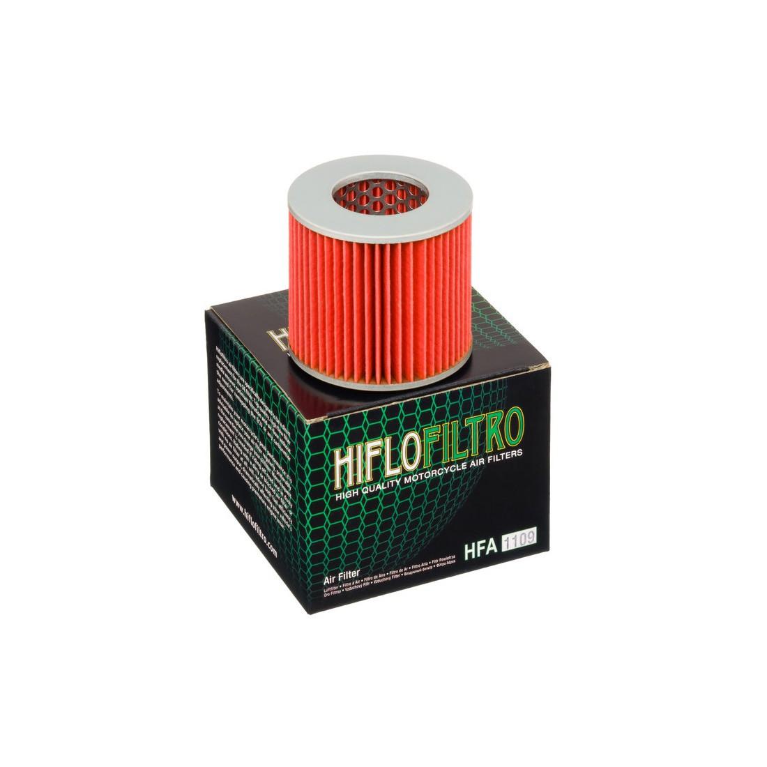 Filtro Aire Hiflofiltro HFA1109