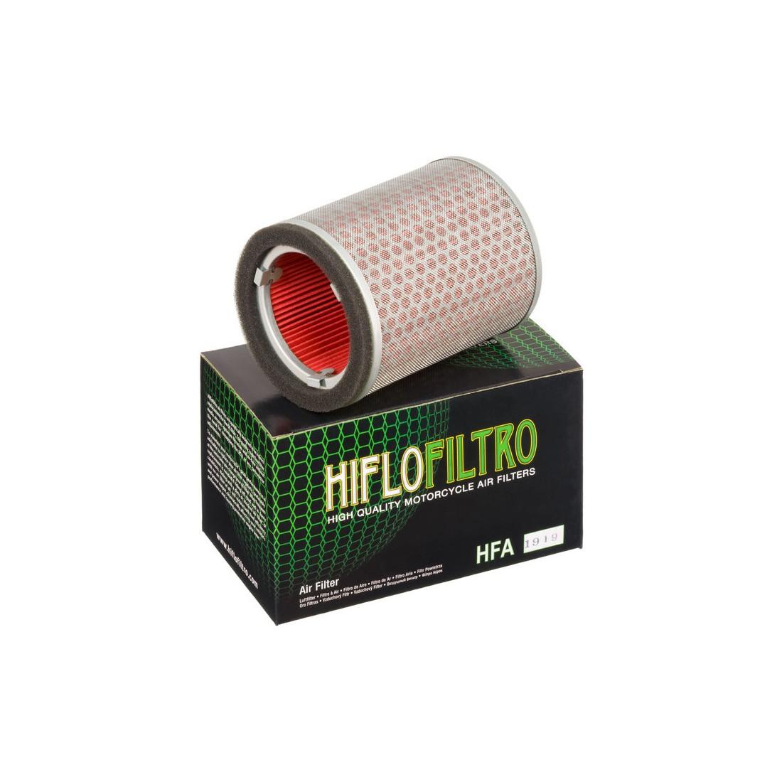 Filtro Aire Hiflofiltro HFA1919